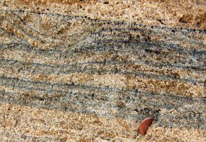 Heavy minerals beach sand